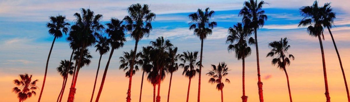 Vital Santa Barbara's Laughing Heart